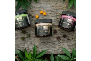 Charlotte's Web CBD Products Are Now Available on ShopCBD.com